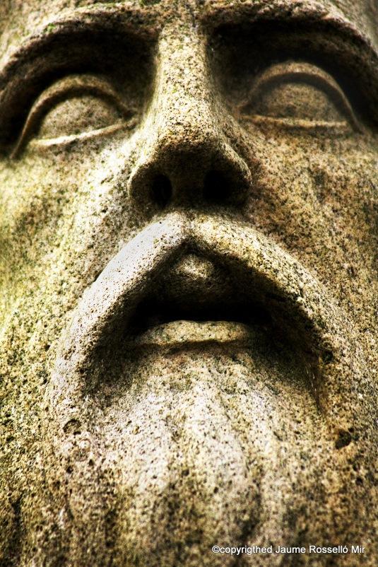 Ramon Llull face